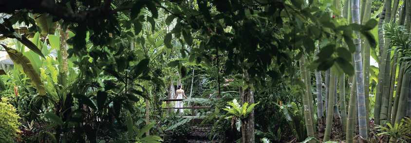 Botanic Gardens Tourism and Events Queensland